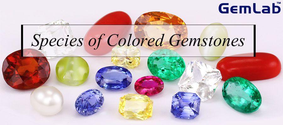 Species of Colored Gemstones