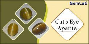 Cats eye Apatite